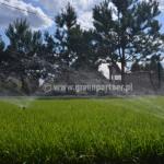 Nawadnianie trawnika Mińsk Mazowiecki