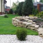 ogród (1)