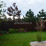 ogród (13)