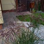 ogród (16)