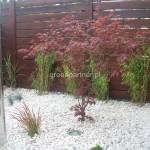 ogród w Wawrze, projekt ,realizacja, nawadanianie, pielęgnacja  (17)