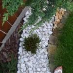 ogród (23)