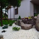 ogród (39)