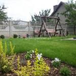 ogród (46)