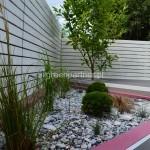 ogród (59)