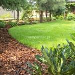 ogród (64)
