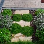 ogród (9)