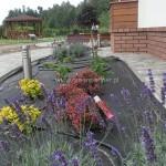 Projekt i realizacja ogród Stanisławów