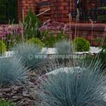 Ogród Brzóze (1)