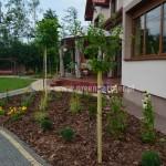 Ogród Brzóze (2)