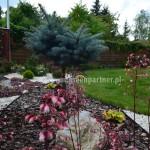 Ogród Brzóze (7)