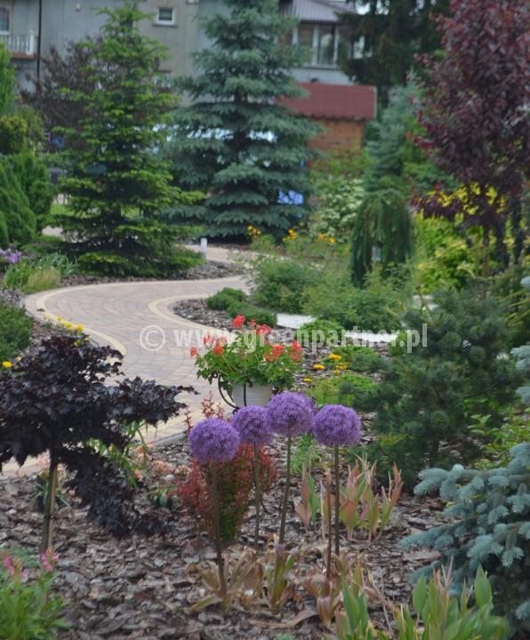 Ogród Stanisławów (4)