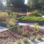 Ogród Targówka (13)